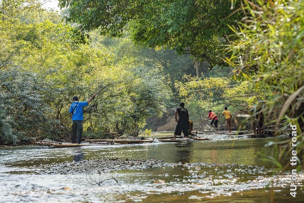 Bild Gegenverkehr, Khao Sok Nationalpark – hier werden Flösse zurück zum Start gebracht