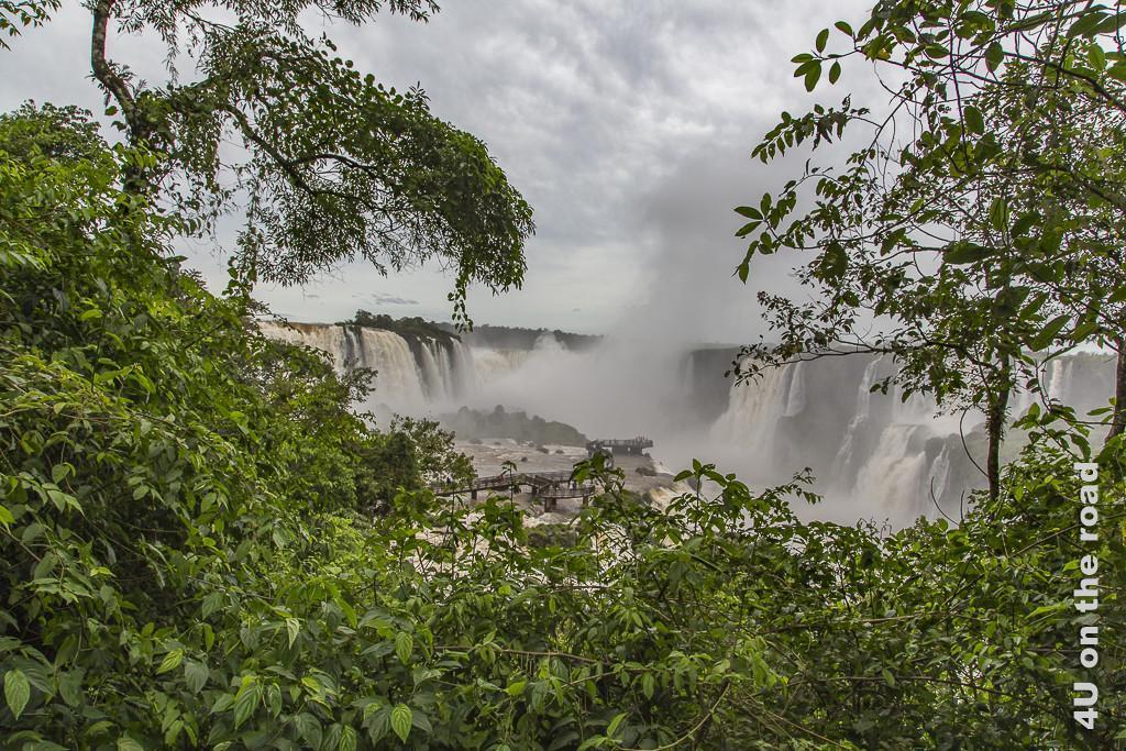 Bild Iguazu, Brasilianische Seite - Blick aus der Ferne auf die Wasserfälle über Urwald und die Wasser-Terrasse mit dem Steg hinweg in das lange, sich nach hinten erstreckende Tal mit Wasserfällen von beiden Seiten.