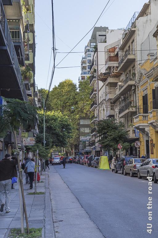 Bild Buenos Aires - Stadtviertel Palermo, hier ist alles ein wenig niedriger. Die Gebäude haben nur 3 bis 6 Stockwerke. Sie haben unterschiedlichste Stile von Kolonialzeit bis heute, ebenso verschiedene Farben, aber alle haben viele Balkons zur schmalen Strasse.