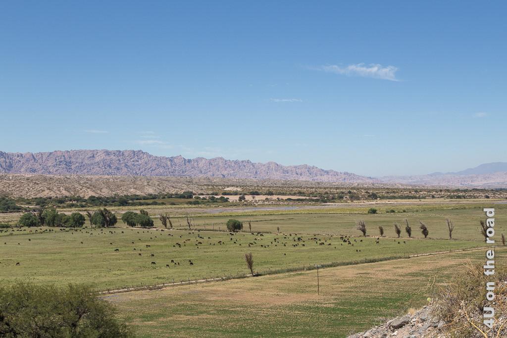 Bild Der Blick weitet sich und zeigt Weiden und Felder in einem weiten topfebenen Tal. Im Hintergrund rotbraune Bergzüge unter fast wolkenlosem Himmel.