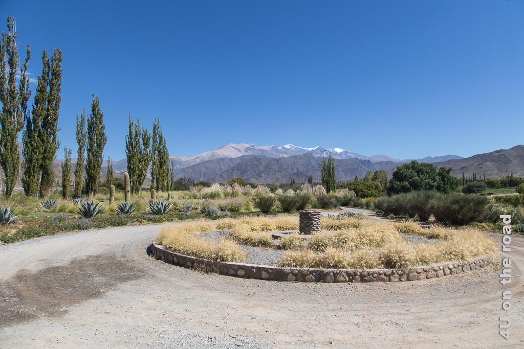 Bild Blick Hotelauffahrt des Klosters La Merced del Alto ausserhalb von Cachi mit teils grasbewachsener Rotunde. Links und rechts der Auffahrt Kakteen, Agavaen und schlanke, hochgewachsene Bäume und Büsche. Im Hintergrund zwei Gebirgsketten, die hintere noch mit Schneefeldern.