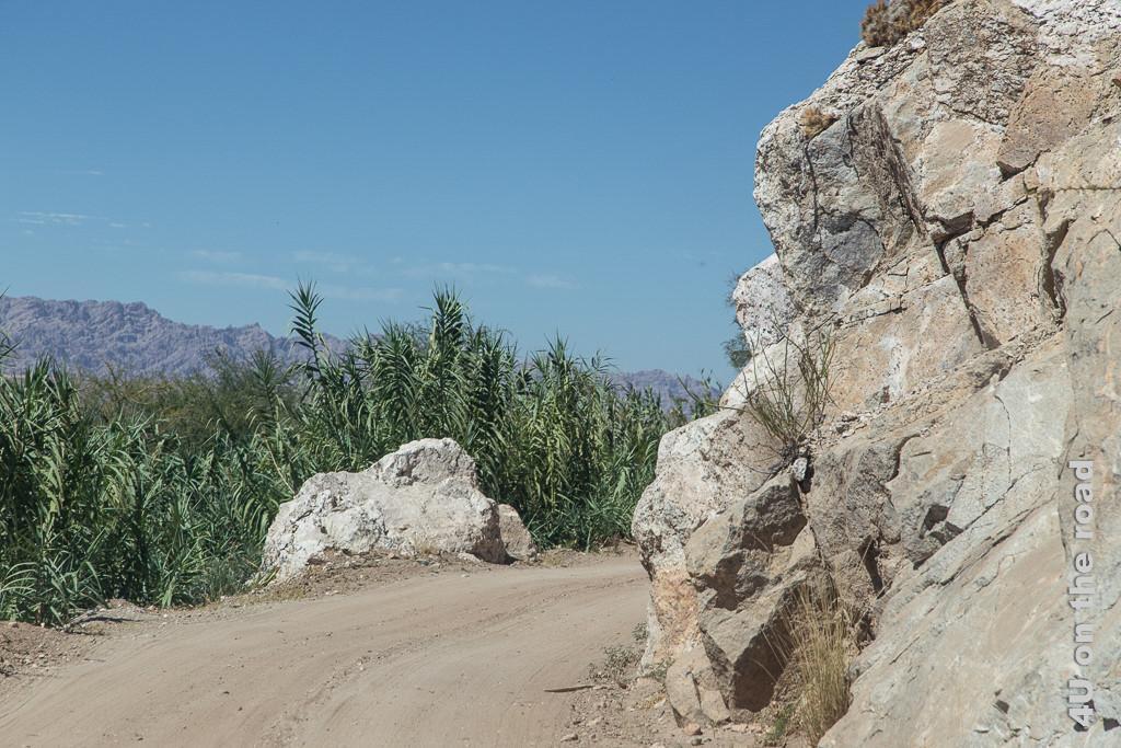Bild Die Ruta 40 auf dem Weg nach Cafayate ist eine Sandpiste, die sich in vielen kleinen Kurven an der Talseite entlanf der Felsen schlängelt. Man kann selten sehen, was hinter der nächsten Felsnase vielleicht entgegenkommt.