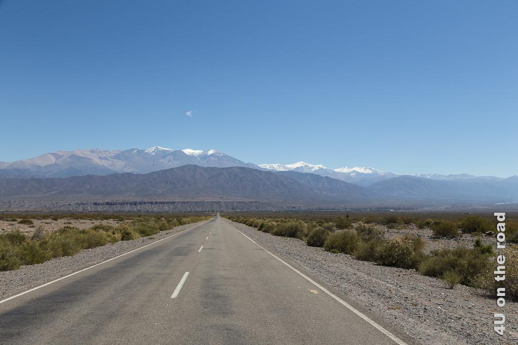 Bild Die Sierra de Cachi. Eine schnurgerade, geteerte Strasse führt auf die Bergkette der Sierra de Cachi zu. Links und rechts der Strasse die karge Ebene. Die höchsten der Berggipfel noch mit Schneemütze.