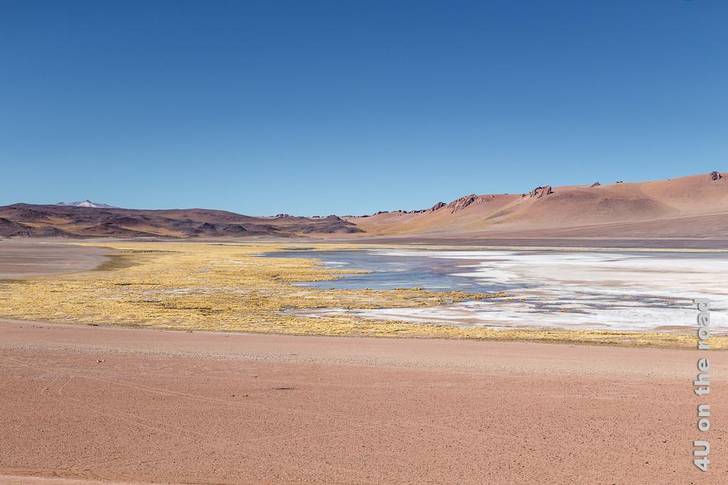 Bild Entlang des Weges nach San Pedro de Atacama - Farbspiele zeigt rötlichen Sand, gelbe Pflanzen, blaues Wasser, weisse Salzkruste. Im Hintergrund erheben sich dünenartige Berge.