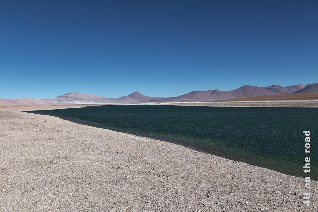 Bild Entlang des Weges nach San Pedro de Atacam - ein See, zeigt einen grünlicher See mit Wellen, gerahmt von einem kiesigen Strand und höheren Bergen im Hintergrund, dunkelblauer Himmel
