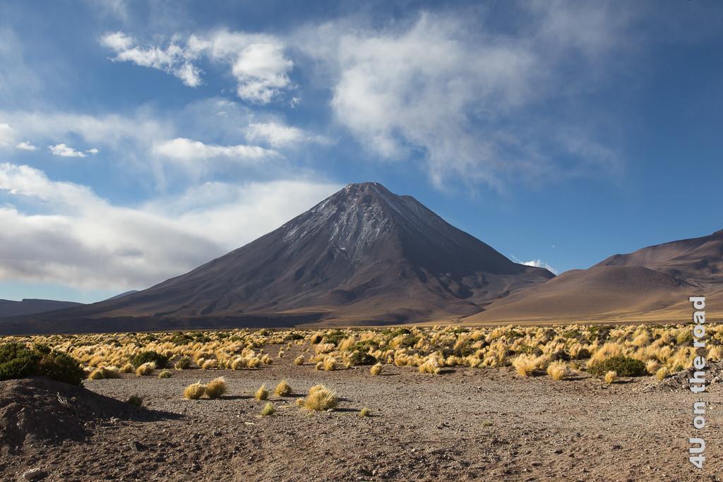 Bild Entlang des Weges nach San Pedro de Atacama - zeigt majästetischer Kegelvulkan mit Puderzuckerschnee vor gelben Grasbüscheln, blauer Himmel mit Wolken