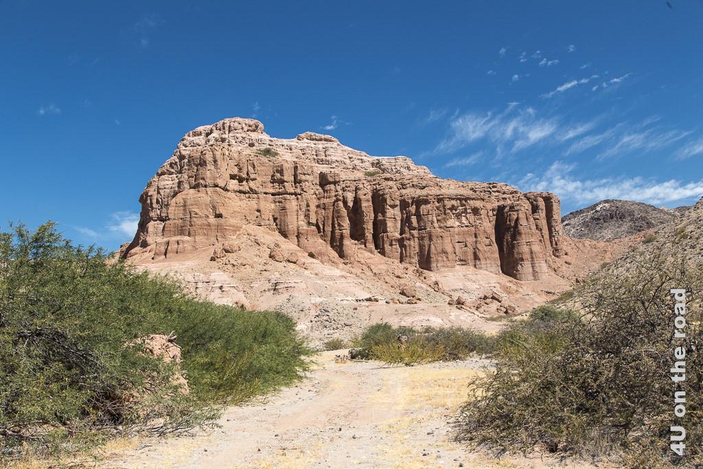 Bild Fast könnte man glauben, im Monument Valley zu sein. Rotbraune Trutzburgfelsen stehen einzeln in der hügeligen Landschaft (Valle Calchaquies).