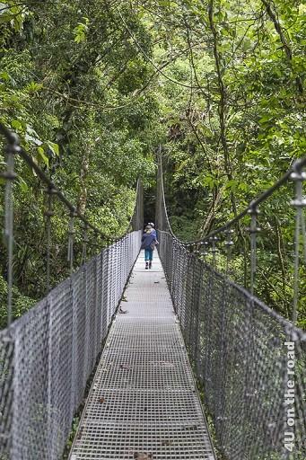 Bild Hängebrücke im Hanging Bridges Park, zeigt eine lange an Stahlseilen befestigte Hängebrücke durch den Dschungel