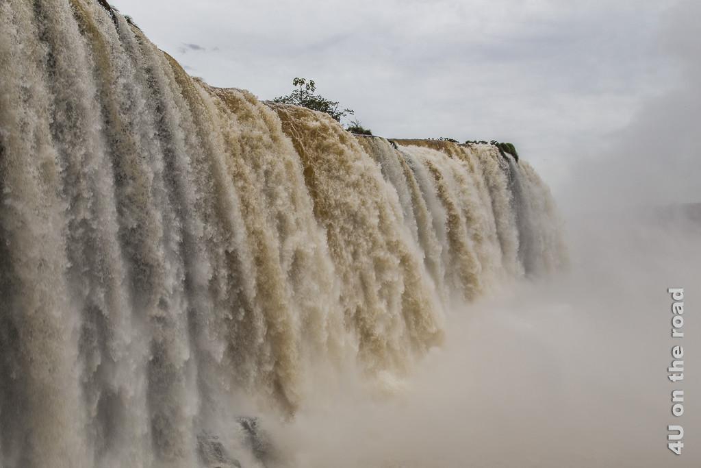Bild Iguazu, Brasilianische Seite - Neben dem Wasserfall, der in breiter Front in weissen und braunen Strömen über mehr als 30 Meter herabstürzt. Davor eine grosse Gischtwolke