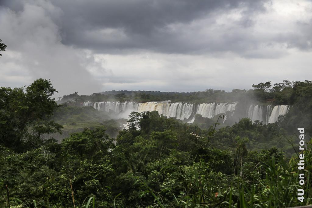 Bild Iguazu - Blick über den Urwald hinweg auf die breite Front der Wasserfälle