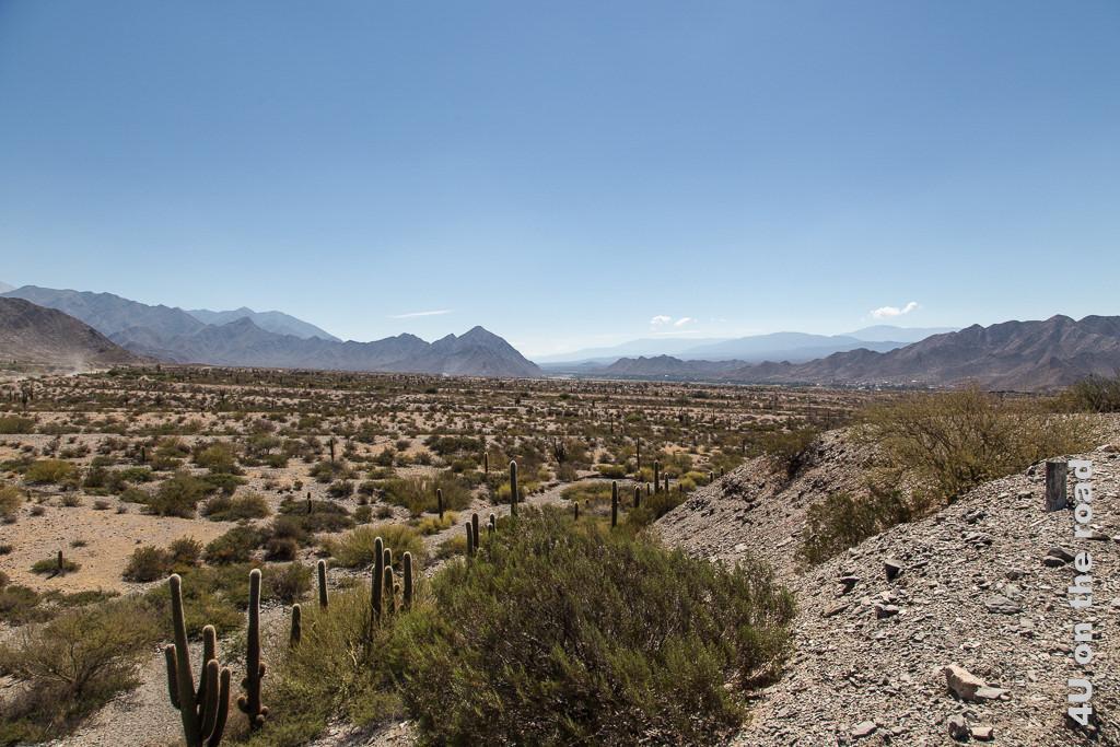Bild Karge Landschaft mit Kakteen und Bergen, darüber strahöed blauer Himmel