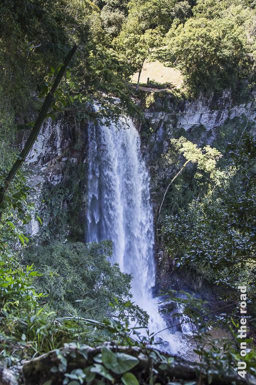 Bild Salto Encantado - Provinz Misiones. Ein etwa 10 bis 15 Meter hoher Wasserfall, der im Urwald in einen kleinen Kessel stürzt.