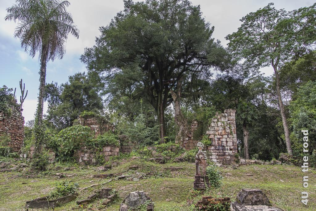 Bild Mission Santa Ana - Ruinen - Provinz Misiones. Mauerreste, teils nur auf Bodenhöhe, 1 Grabstein, alles stark von Grün überwuchert. Dahinter beginnt der Wald