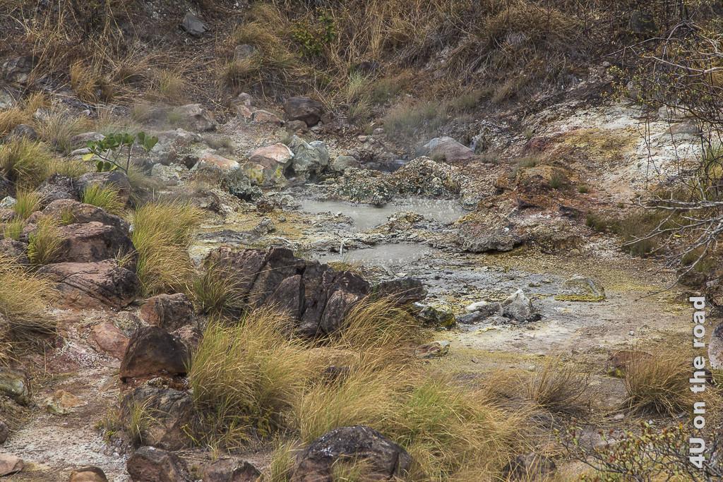 Bild Auch dieser Tümpel ist warm und köchelt, Rincon de la Vieja Nationalpark zeigt Tümpel umgeben von bunten Steinen mit aufsteigenden Blasen