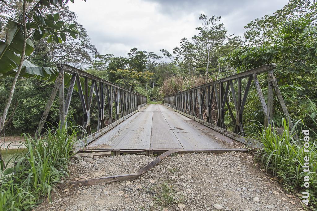 Bild Brücke auf dem Weg nach Selva Bananita zeigt eine wackelige Holz-Metall-Brückkonstruktion in Auflösung.