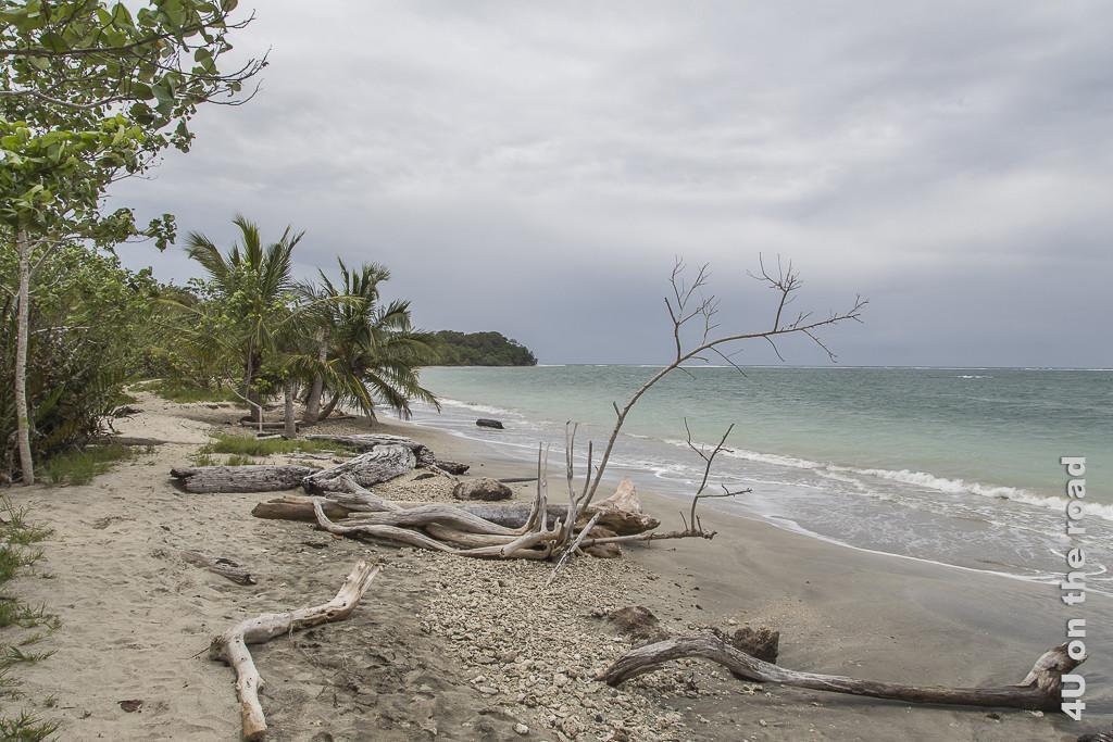 Bild Weg entlang des Meeres - Cahuita Nationalpark zeigt Urwald, Sandweg, schmaler Streifen mit Baumstämmen und Palmen und die Meeresbucht