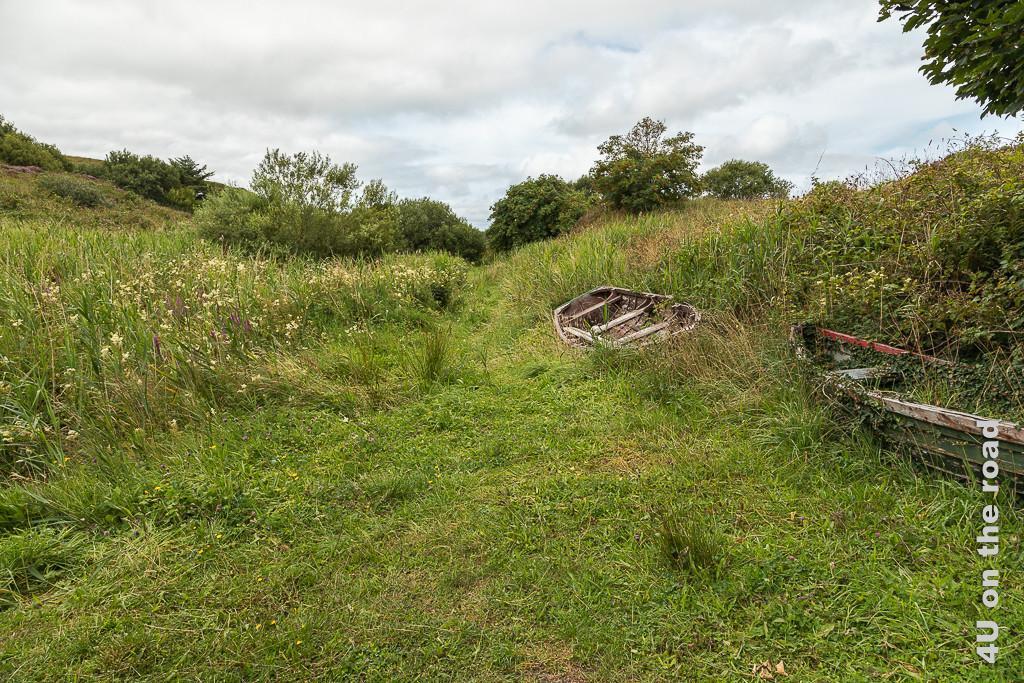 Bild Auf dem Weg zum Doon Fort zeigt den Weg durch hohes Gras. Am Rand liegen zwei überwucherte Ruderboote.