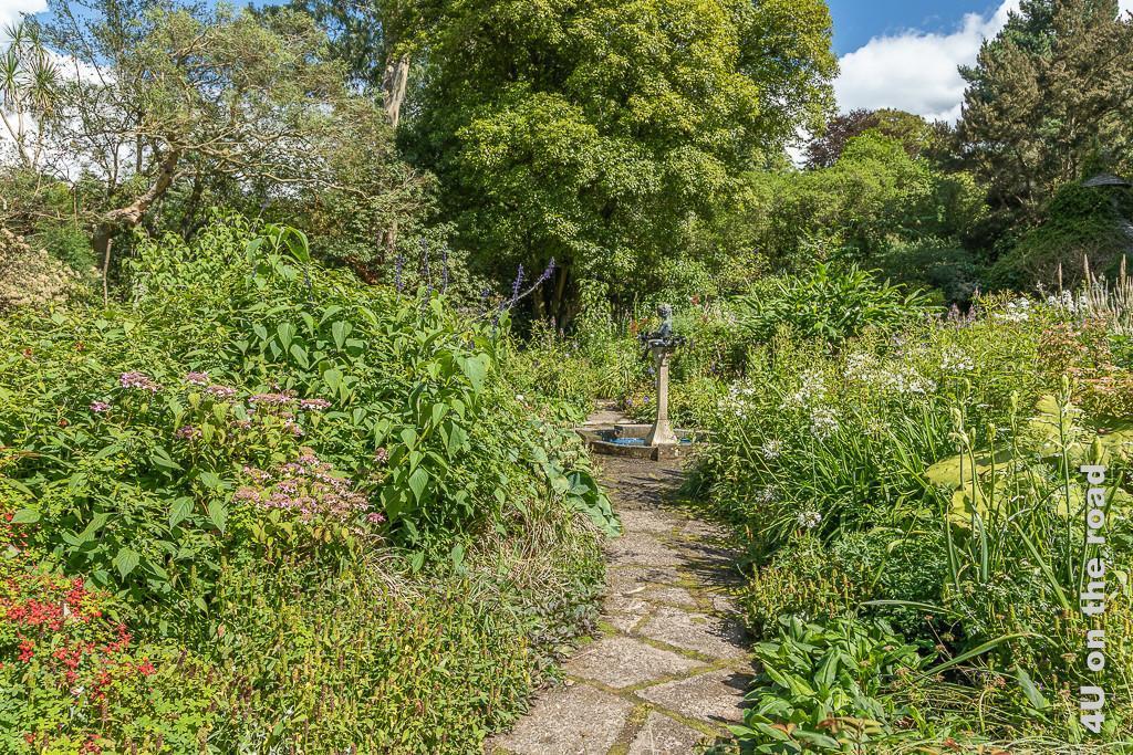 Bronze im Mairi Garten, Mount Stewart , zeigt einen schmalen Weg zum Brunnen mit Bronze. Die Pflanzen in den Beeten recht und links wuchern üppig durcheinander. Im Hintergrund stehen hohe Bäume.