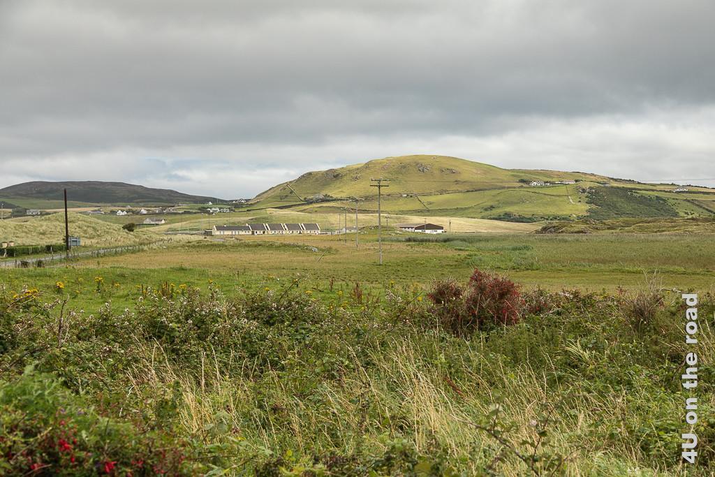 Bild Hinterland Ballyhiernan Bay, Fanad Halbinsel zeigt die Landschaft jenseits der Dünen. Hohe Gräser, Fuchsien und andere Büsche wachsen im Vordergrund, dann sieht man die Strasse, Häuser und höhere Hügel.