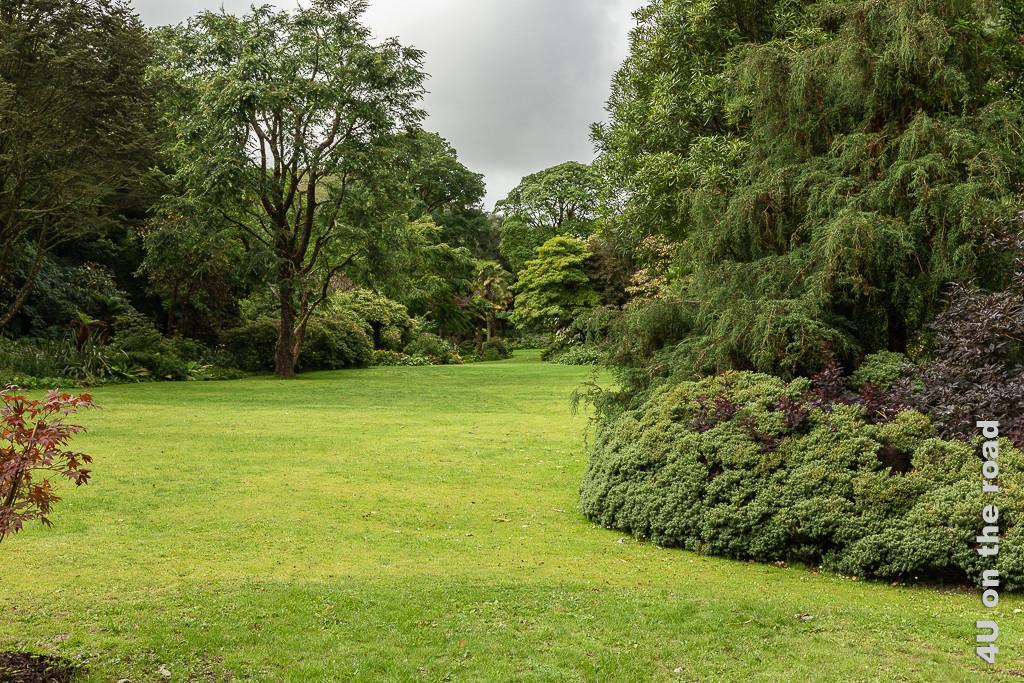 Bild Glenveagh NP - gepflegter Park mit alten Bäumen zeigt gepflegte Rasenflächen, die von Bäumen und Büschen unterschiedlichster Wuchsform eingerahmt sind.