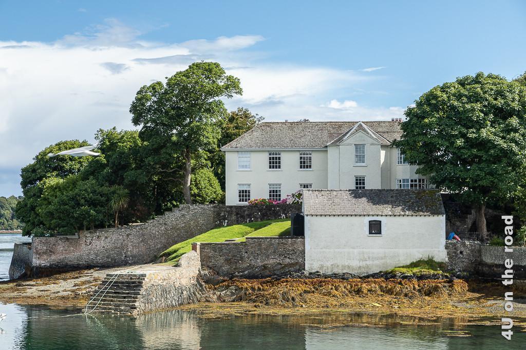 Bild Schönes Haus am Hafen von Strangford zeigt ein weisses Haus am Wasser des Strangford Loughs. Vom Wasser geht eine gemauerte Treppe nach oben zu einer Rasenfläche vor dem Haus. Ein Mauer und ein Bootshaus begrenzen das Grundstück mit alten Bäumen.