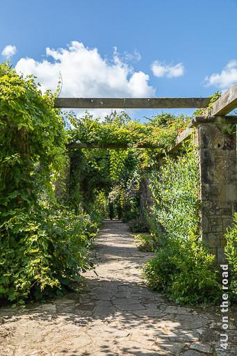 Pergolagang am italienischen Garten, Mount Stewart zeigt Holzstreben auf gemauerten Pfosten von Kletterpflanzen umrankt.