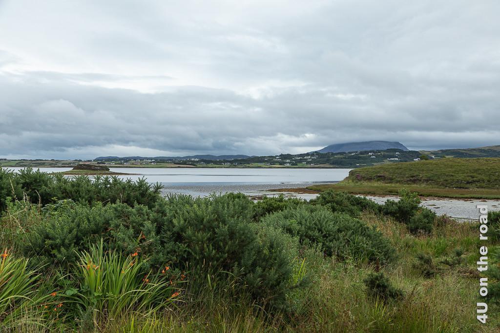 Bild Berg in den Wolken zeigt einen Fjordarm bei Ebbe. Im Vordergrund grüne Büsche und Montbretien. Aus dem zurückgehenden Wasser ragt eine kleine Insel. Im Hintergrund flaches Land mit Häusern und eine markante Erhebung in den Wolken.