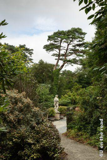 Bild Glenveagh NP - Italienische Terrasse zeigt einen von Büschen gerahmten Kiesweg, der zu einer Marmorterrasse mit Statuen und bepflanzten Töpfen führt. Die weisse Statue hebt sich hervorragend vom Grün der Blätter des Hintergrunds ab