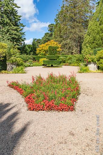 Bild die rote Hand von Ulster, Mount Stewart zeigt eine rechte Hand, die mit roten blühenden Blumen bepflanzt ist. Im Hintergrund ist ein Formschnittgehölz in Form einer Harfe umgeben von Blumenrabatten und Hecken zu sehen.