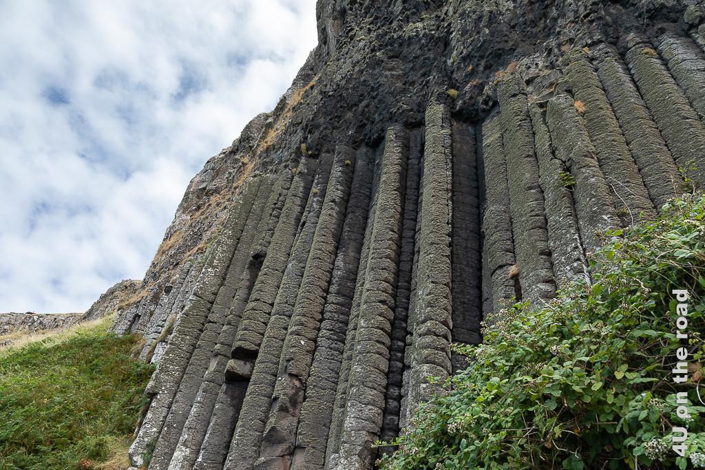 Bild Giants Causeway - Orgelpfeiffen zeigt Basaltformation in Form einer Orgel