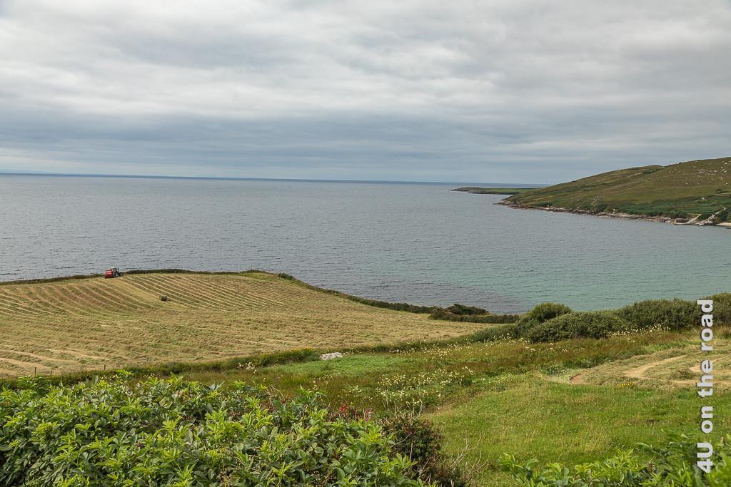 Bild Ausblick bei Largy zeigt eine viereckig gemähte Wiese mit einem Traktor, der das Heu auflädt, an einer Meeresbucht. Rechts sieht man den weiteren Verlauf der Küste.