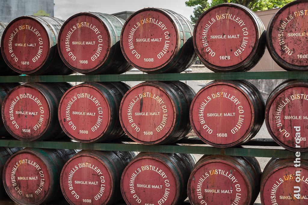 Bild Bushmills - Fässer zeigt in drei Reihen übereinander gestapelte Whiskey Fässer mit rotem Deckel und weisser Schrift