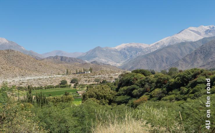 Das Bild zeigt im Vordergrund üppiges Grün und im Hintergrund die hohen Berge, welche Cachi umgeben.