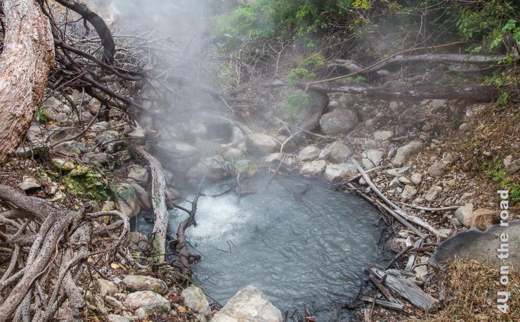 Bild zeigt kochendes Wasserloch umgeben von Steinen und Wurzeln.