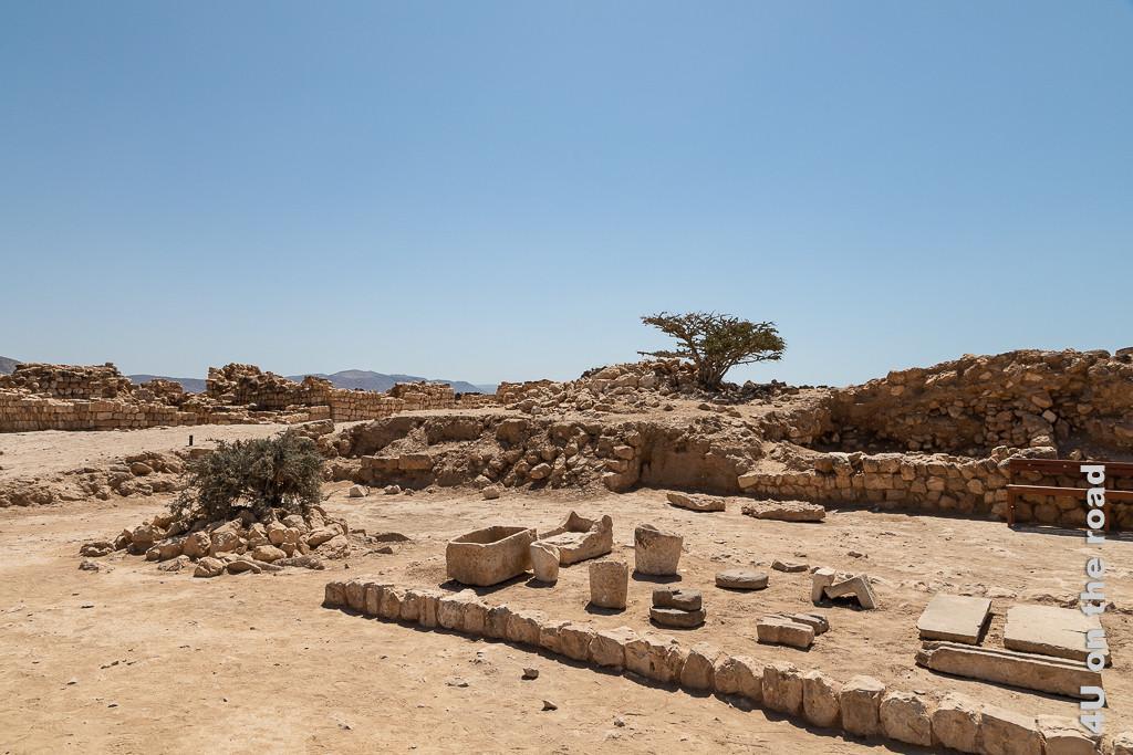 Bild Sumhuram Fundstücke zeigt steinerne Wasserbecken, Behälter und Kanalstücken in Mitten von nur teilweise rekonstruierten Mauern. Im Hintergrund steht ein grosser Weihrauchbaum.