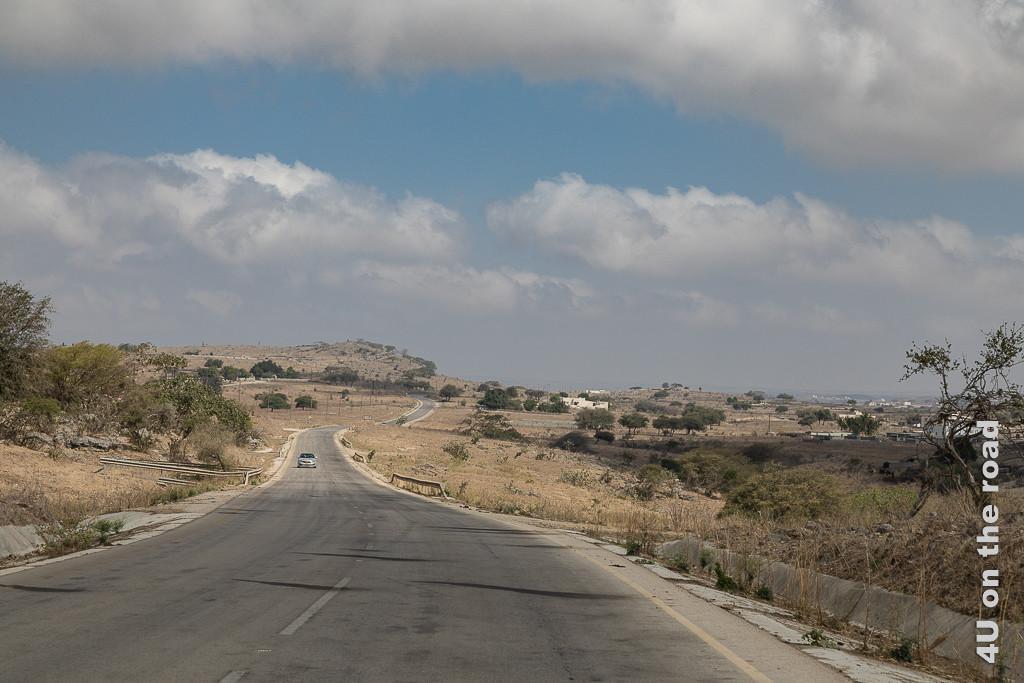 Bild Auf der Hochebene vor Tawir Attir sieht man eine mit grünen Bäumen bewachsene Hochebene, durch die sich die Strasse schlängel.