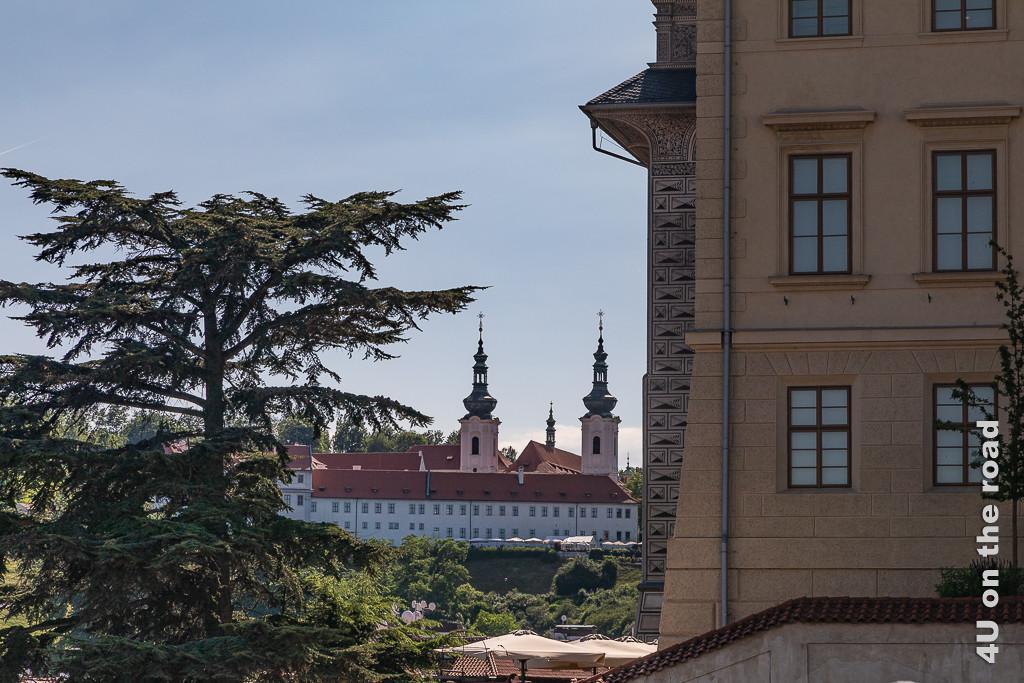Bild Blick auf das Kloster Strachov zeigt das Kloster in der Ferne eingerahmt von einem breit wachsendem Nadelgehölz und Haus.