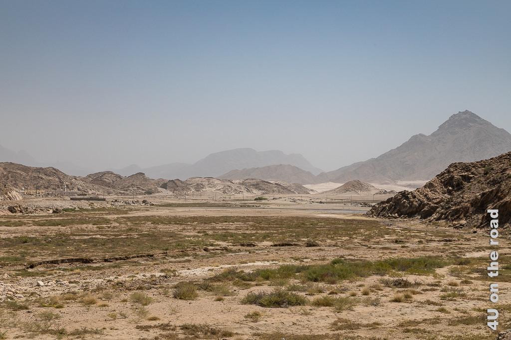 Bild Sogar Wasser kommt von irgendwo her zeigt ein Wadi mit grünen Pflanzenbüscheln, welches sogar noch ein wenig Wasser führt. Im Hintergrund erheben sich hohe Berge in den Himmel.