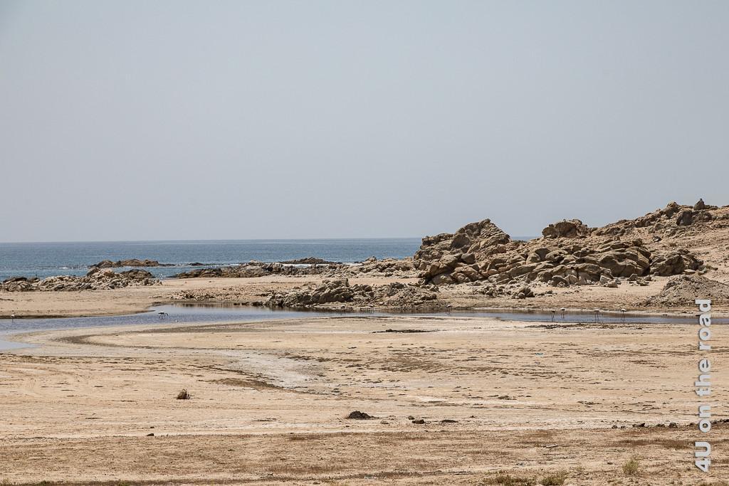 Bild Lagune mit Flamingos zeigt einen Wasserlauf zum Meer, viel Sand und Felsen. Fünf Flamingso stehen im Wasser uns suchen nach Futter.