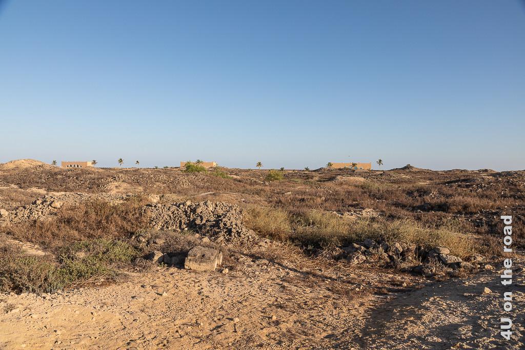 Bild Hier wartet noch viel Arbeit auf die Archäologen im Al Baleed Archäologiepark zeigt ein riesiges Areal mit noch auszugrabenden Hügeln und Steinresten.