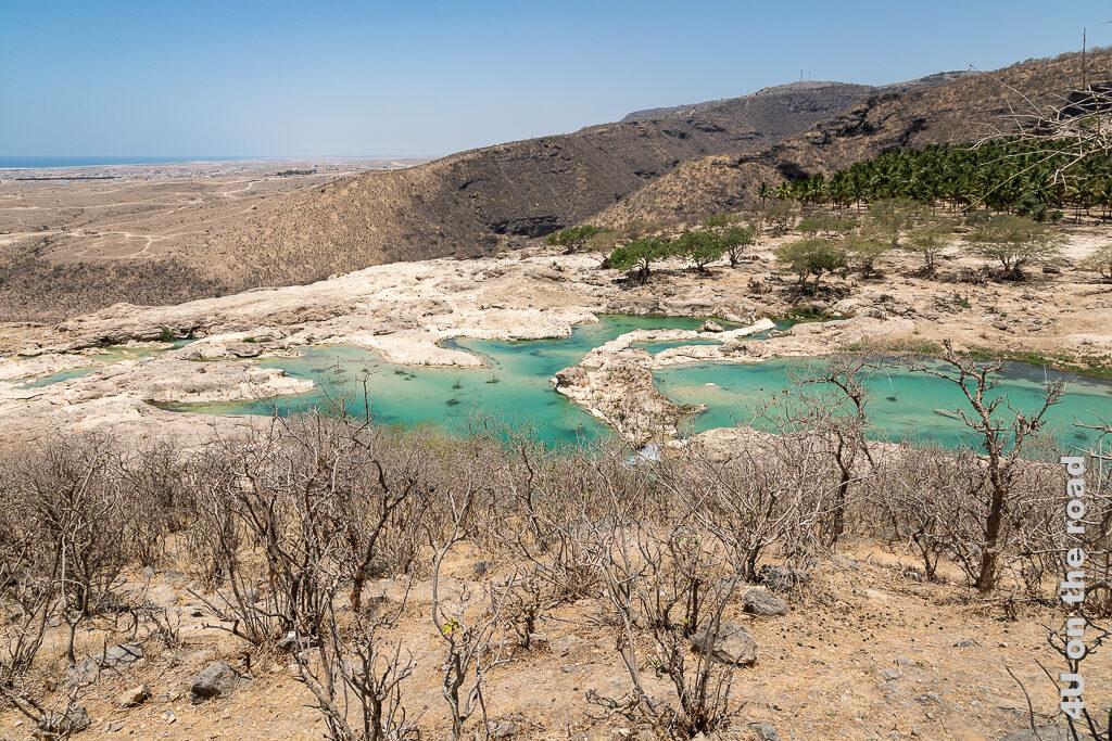 Wasserbecken oberhalb des Wasserfalls - Wadi Darbat zeigt von oben gesehen das über Terrassen strömende türkisfarbene Wasser, welches sich in grossen Becken sammelt. Im Vordergrund die Bäume sind ohne Laub, auf der anderen Seite sind die Bäume grün.