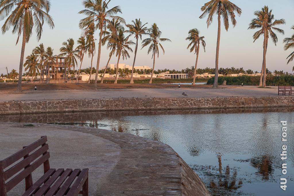 Bild Abendstimmung im Al Baleed Archäologiepark zeigt die Kanäle und Palmen im Abendlicht.