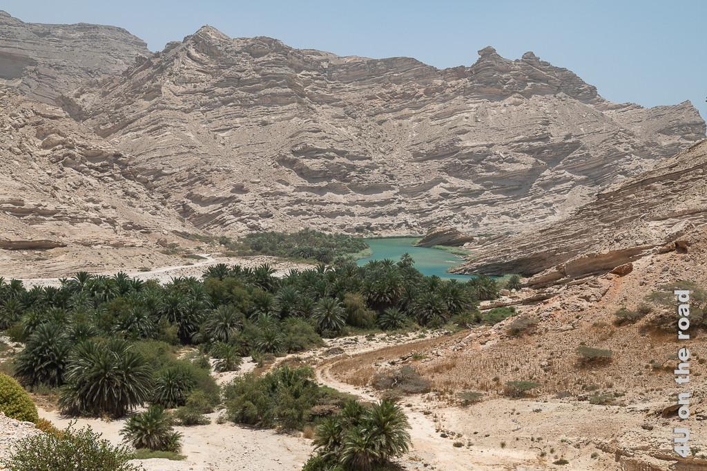 Das Bild Oase am Viewpoint zeigt mitten in der Felswüste einen türkisblauen See vor dem jede Menge Palmen wachsen.