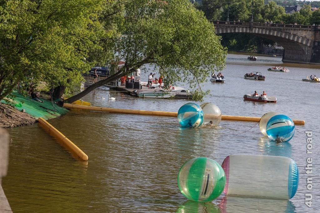 Bild Wasserspass auf der Moldau zeigt bunte Plastikkugeln, in denen sich Personen rollend auf dem Wasser fortbewegen. Im Hintergrund sieht man Tretboote und die Brücke.