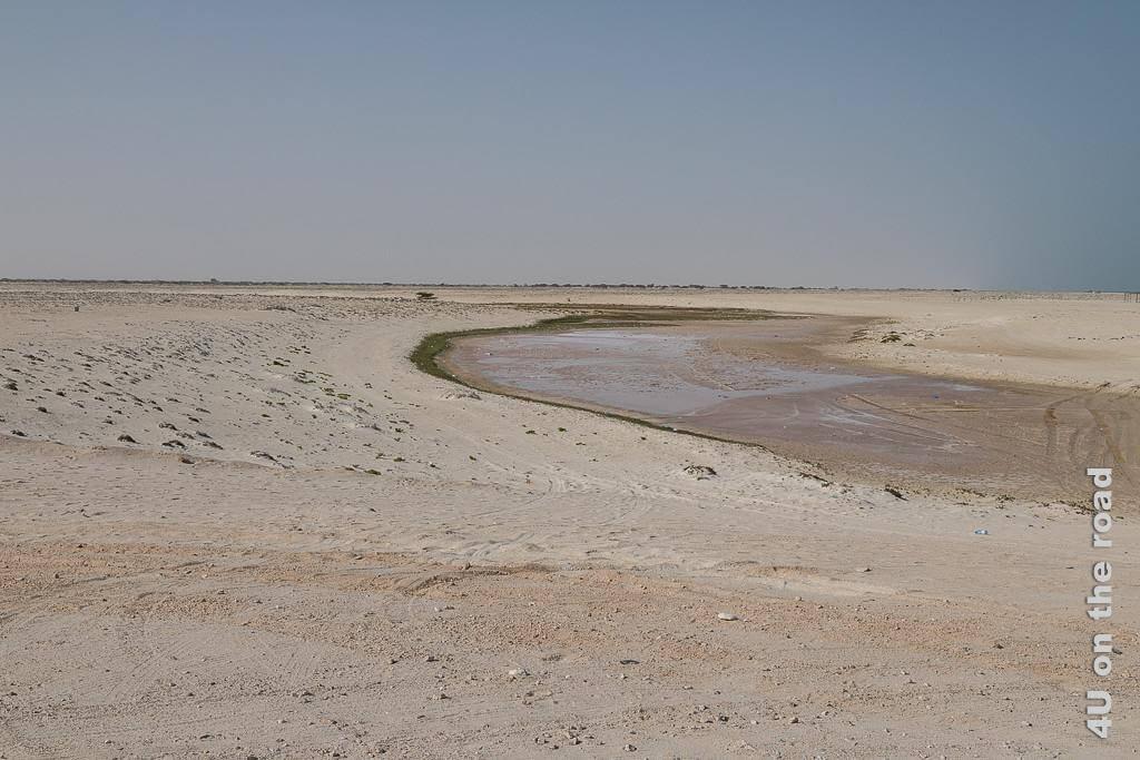 Bild Die gar nicht pinke Lagune zeigt die fast gänzlich ausgetrocknete Lagune mit Plastikmüll im Sand.