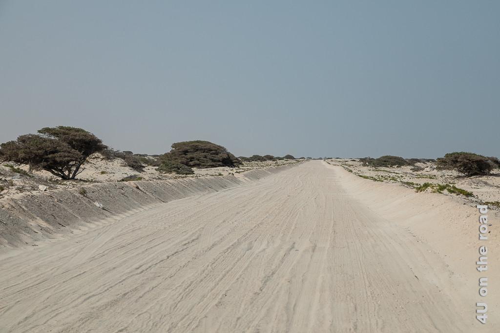 Bild Plötzlich mündet die Teerstrasse in einer Sandpiste zeigt eine Sandpiste die trotz sandigem Boden durch eine mit Büschen und Bäumen bewachsene Landschaft führt.