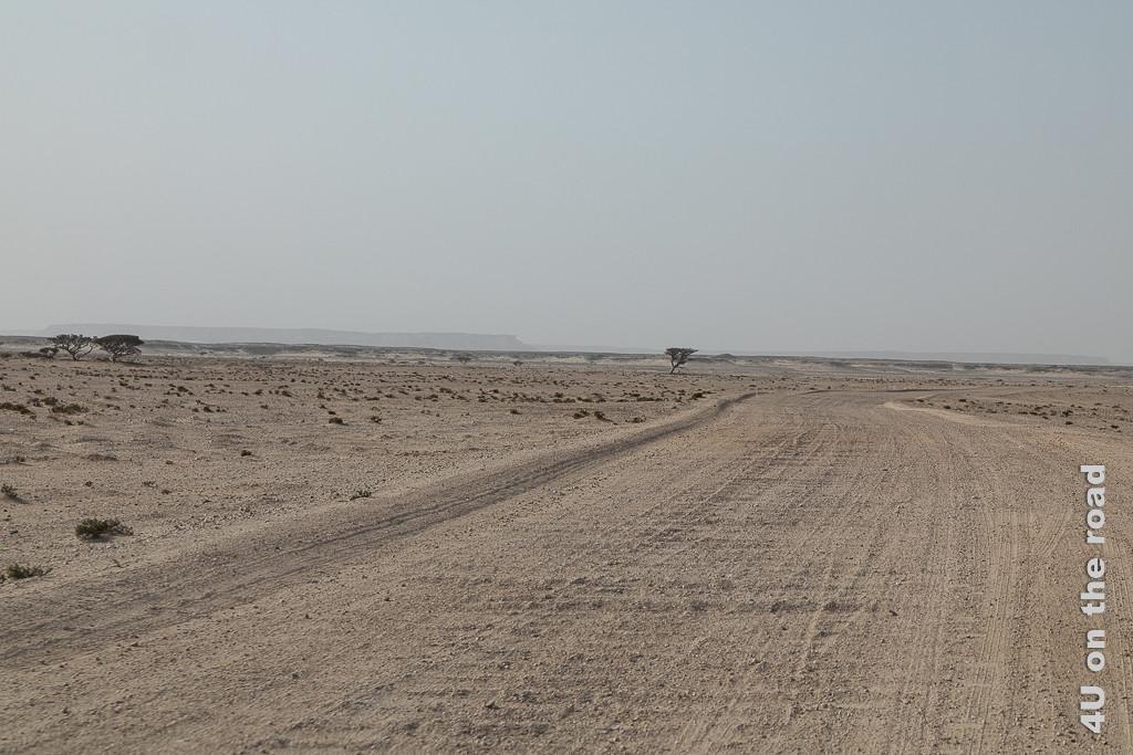 Bild Die Bäume werden seltener und die Strasse wird zum Waschbrett zeigt eine weite Sandebene durch die sich die gewellte Piste zieht.