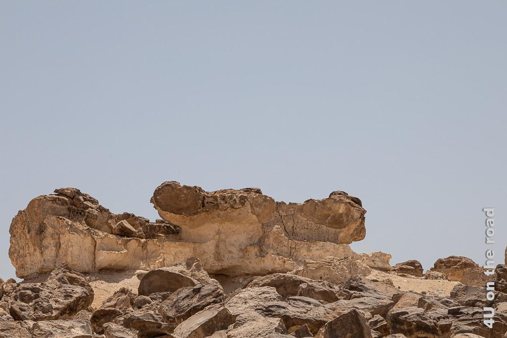 Rock Garden - Bild Insekt zeigt einen Fels, der ein grosses Insekt mit seinen Lanzettaugen darstellen könnte.