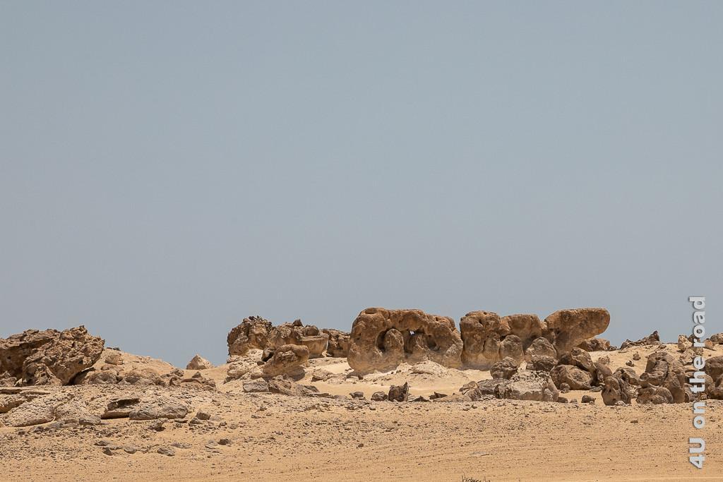 Rock Garden, Duqm - Fantasietier Bild zeigt eine Art Wurm aus zwei Gliedern, die entfernt an eine Brille oder Bretzel erinnern und einen länglichen Kopf