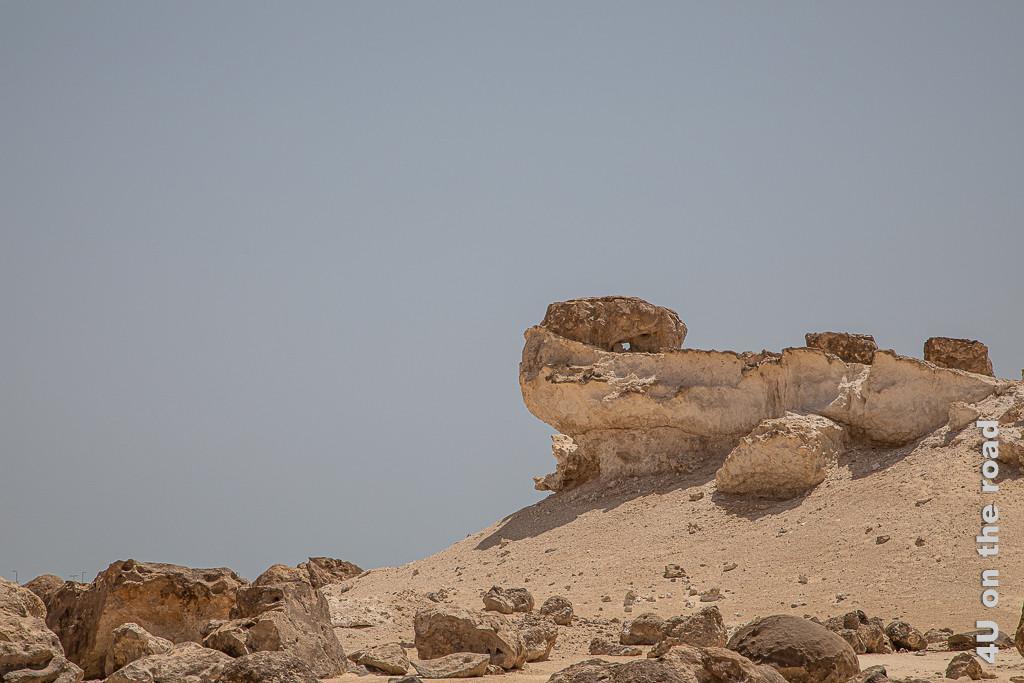 Rock Garden - Reptil auf Sandhaufen zeigt eine grosse Echse